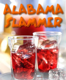 cocktail_alabama_slammer.jpg